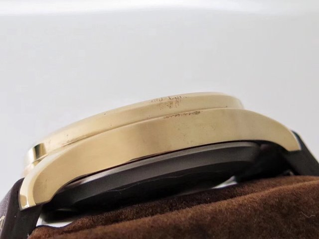 IW501005 Bronze Case